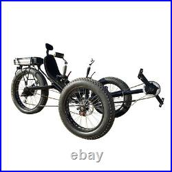 500watt Motor Electric Assisted Carbon Steel Fat Tad Recumbent Tadpole Tricycle